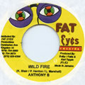 Anthony B - Wild Fire (Fat Eyes)
