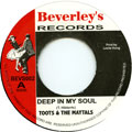 Toots & The Maytals - Deep In My Soul