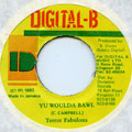 Terror Fabulous - Yu Woulda Bawl (Digital B)