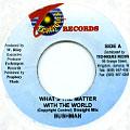 Tony Rebel, Bushman - What's The Matter (Techniques)