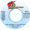 Pam Hall - Tell Me What U Dealing Wid