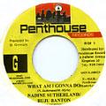 Buju Banton, Nadine Sutherland - What Am I Gonna Do (Penthouse)