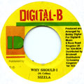Sizzla - Why Should I