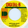Singing Melody - Drive Me Crazy