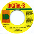 Anthony B - All What's Going On