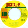 Terry Ganzie - Fly Away Home (Digital B)