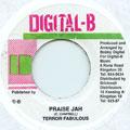 Terror Fabulous - Praise Jah (Digital B)