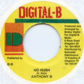 Anthony B - No Hush
