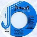 Vybz Kartel - Grudge You (Jammys)