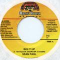 Sean Paul - Big It Up (Opera House)