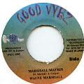 Wayne Marshall - Marshall Matrix (Good Vybz)