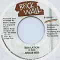 Junior Reid - Tribulation (Brick Wall)
