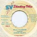 Sugar Black - Wild Flowers (Shocking Vibes)