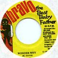 Beenie Man - Wonder Why (Bravo The Best Baby Father)