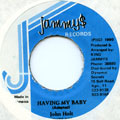 John Holt - Having My Baby (Jammys)