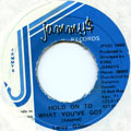 Leroy Gibbons - Hold On To What You've Got (Jammys)