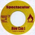 Spectacular - How Can I