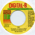 Morgan Heritage, Bushman - Try (Digital B)