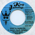 Ward 21 - What Ya Wanna Do (King Jammys)