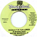 Wayne Marshall, Vybz Kartel - Inhale It In Yuh Lungs (Young Blood)
