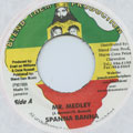 Spanner Banner - Mr Medley (Blend Them)