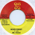 Mr Vegas - Never Forget