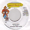 Anthony Red Rose - Ganja Man