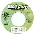 Shaggy, Olivia - Wild 2 Nite Remix (Big Yard)