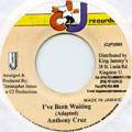 Anthony Cruz - I've Been Waiting (CJ Records)