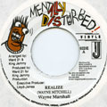 Wayne Marshall - Realize (Mentally Disturbed)
