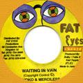 Sayoko, Merciless - Waiting In Vain (Fat Eyes)