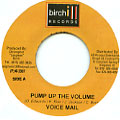 Voice Mail - Pump Up The Volume