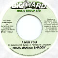 Ninjaman, Shaggy - A Nuh You (Big Yard)