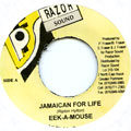 Eek A Mouse - Jamaican For Life