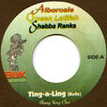 Alborosie, Queen Latifah, Shabba Ranks - Ting A Ling Refix