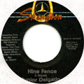 Junior Delgado - Nine Fence (Skengdon)