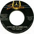 Tamlins - Hang On To Your Love
