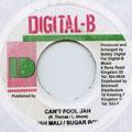 Jahmali, Sugar Roy - Can't Fool Jah (Digital B)