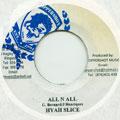Hyah Slide - All N All (Coppershot)