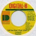 Sanchez - Tell You How I Feel (Digital B)