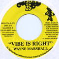 Wayne Marshall - Vibe Is Right (Massive B US)