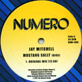Jay Mitchell - Mustang Sally (Original Mix)