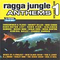 Various - Ragga Jungle Anthems Volume 1 (Jungle Mixes) (2LP)