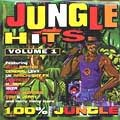 Various - 100% Jungle Hits Volume 1 (2LP)