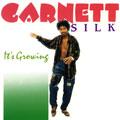 Garnett Silk - It's Growing (VP US)