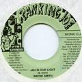 Wayne Smith - Jah Is Our Light (Ranking Joe US)