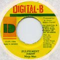 Ninjaman - Fulfilment (Digital B)