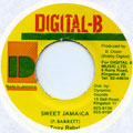 Tony Rebel - Sweet Jamaica (Digital B)