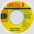 Anthony Malvo - Sound History (Digital B)