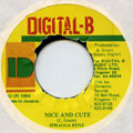 Spragga Benz - Nice And Cute (Digital B)